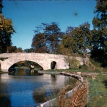 The grove bridge
