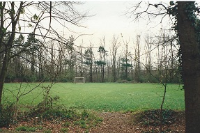 Playing field.  Railway behind the trees at the bottom